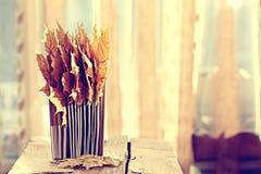Książek strony z suchymi liśćmi klonowymi Zdjęcia Stock