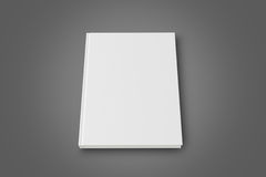 książka ślepej Obrazy Royalty Free
