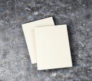 książka ślepej white Ilustracji