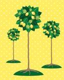 książka botaniczne reprodukcji rocznik drzewa cytrynowe Obraz Stock