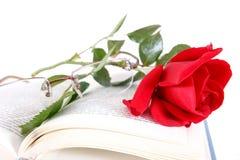 Książka i czerwieni róża z szkłami na stronach książka na białym backgro Zdjęcia Royalty Free