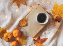 Książka, kawa, złoci liście, pomarańcze, bania i światła na białym pulowerze, obraz royalty free
