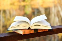 Książka na zmielonym pobliskim jeziorze Wiedza władzą jest Edukacja enlightenment Obrazy Stock