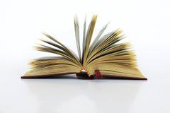 książka otwarta Fotografia Stock