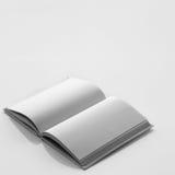 Książka z pustą page Zdjęcie Stock