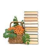 Książki i łozinowy kosz z czerwonymi rowan jagodami na białym backgr zdjęcie stock