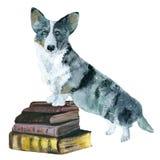 Książki i pies Zdjęcia Royalty Free