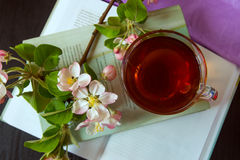 Książki, kwiaty kwitną gałąź jabłoń i filiżanka herbata Zdjęcia Royalty Free