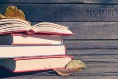 Książki na ławce Fotografia Royalty Free