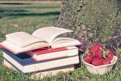 Książki na ziemi Zdjęcie Royalty Free