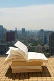 Książki sterta na dachu Zdjęcia Royalty Free