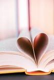 Książkowa miłość Fotografia Royalty Free