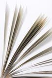 książkowe strony Obraz Stock