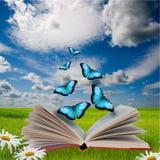 książkowi motyle otwierają Zdjęcia Stock