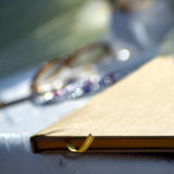 książkowy ślub Obraz Royalty Free