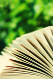 książkowy czytanie Zdjęcie Royalty Free