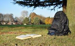 Książkowy czytanie w parku pod drzewem w zmierzchu Zdjęcia Stock
