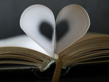 książkowy serce Zdjęcia Stock