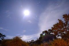 Księżyc światło Obraz Royalty Free