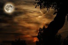 księżyc Fotografia Stock