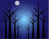 Księżyc drzewa Obrazy Royalty Free