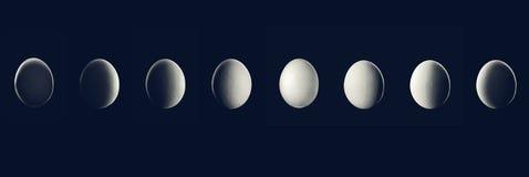 Księżyc fazy przedstawienie jajkiem w nocy z cień planetą Obrazy Stock