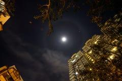 Księżyc halo Obraz Stock