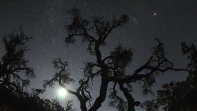 Księżyc i gwiazdy wzrasta nad natury sceną zdjęcie wideo