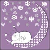 Księżyc kot Obraz Stock