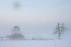 księżyc krajobrazowa zima Zdjęcie Royalty Free
