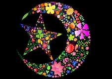 księżyc kwiaciasta gwiazda Zdjęcia Stock