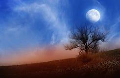 Księżyc nad krajobrazem Zdjęcia Royalty Free