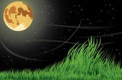 księżyc noc ilustracji