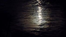 Księżyc połysk odbija w gładkiej powierzchni przy nocą zbiory wideo
