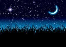 Księżyc przestrzeni trawa Fotografia Stock