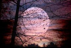 Księżyc set, słońce wzrost obrazy stock