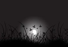 księżyc trawy ilustracja wektor