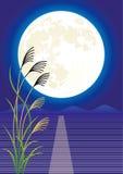 Księżyc viewing Obraz Royalty Free