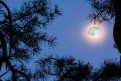 Księżyc w pełni na nocnym niebie Zdjęcia Royalty Free