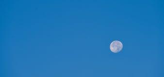 Księżyc w pełni nad niebieskim niebem przy zmierzchem Obrazy Stock