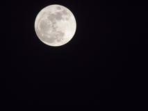 Księżyc w pełni w ciemności niebie Fotografia Royalty Free