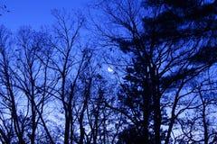 Księżyc w wczesnym poranku Zdjęcia Stock