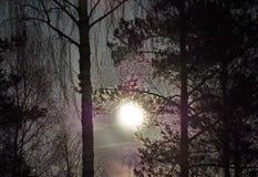 Księżyc wzrost w Virgo gwiazdozbioru nocnego nieba gwiazdach obraz royalty free
