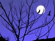 księżyc zmierzch Obraz Stock