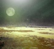Księżycowy śnieg nad przegraną ziemią zdjęcie royalty free
