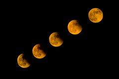 księżycowy zdjęcia royalty free