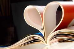 księgę miłości. zdjęcie royalty free