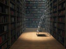 Książki w bibliotece Fotografia Royalty Free
