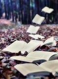Książki w jesieni Fotografia Stock