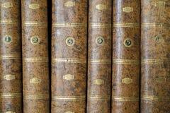 Książkowi kręgosłupy Zdjęcia Stock